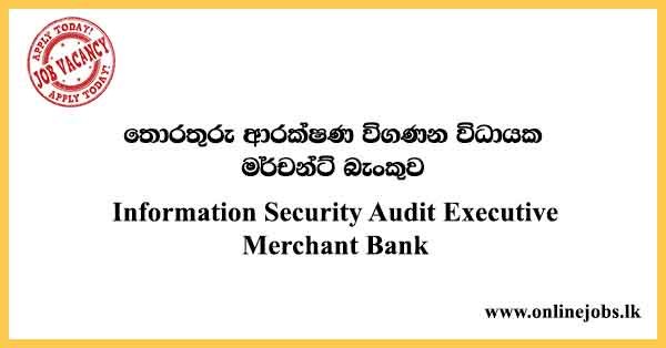 Information Security Audit Executive