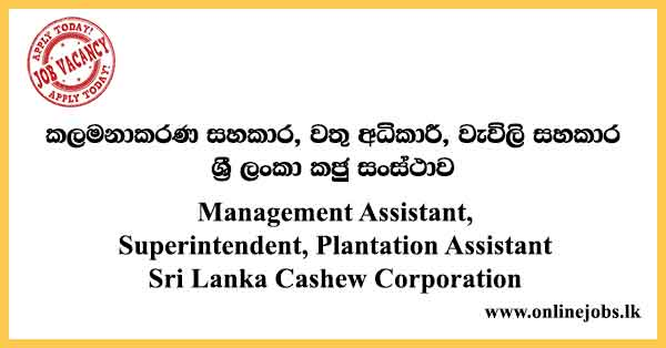 Sri Lanka Cashew Corporation